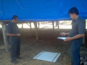 Tim Survey Kepadatan Lalat 2007 in Action